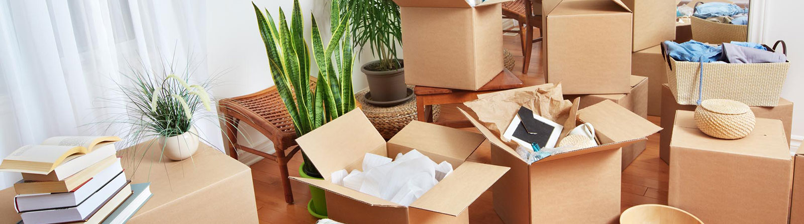 Online Shipment Tracking   Peluso Movers